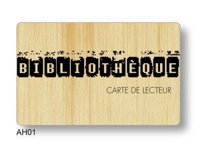carte acces ludotheque